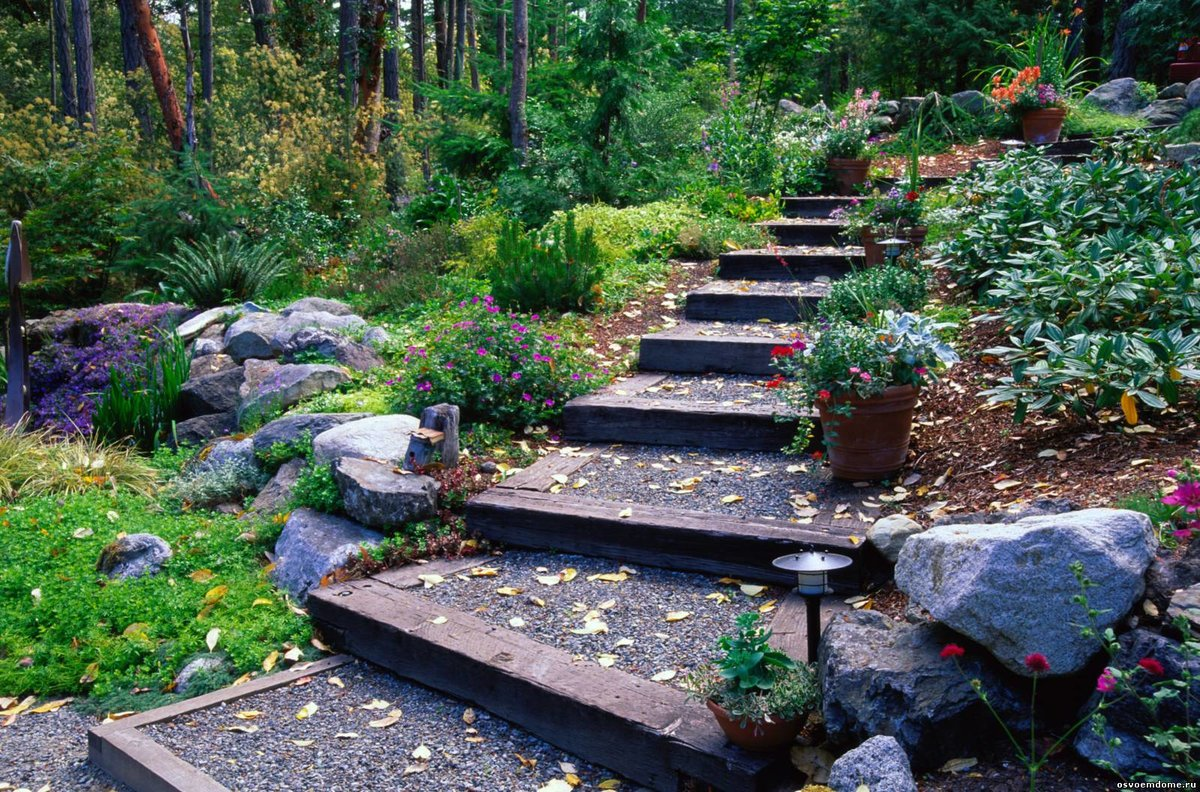 пурпурный, садовые лестницы на дачном участке фото том, что тюмени