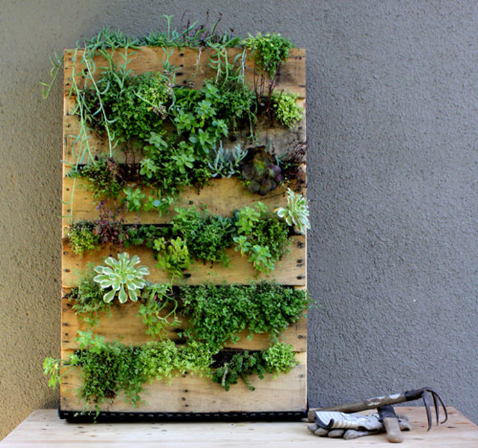 Растения на стене своими руками